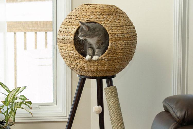 fabriquer soi meme son arbre a chat gobert et son arbre a chat fabriquer un arbre a chat a. Black Bedroom Furniture Sets. Home Design Ideas