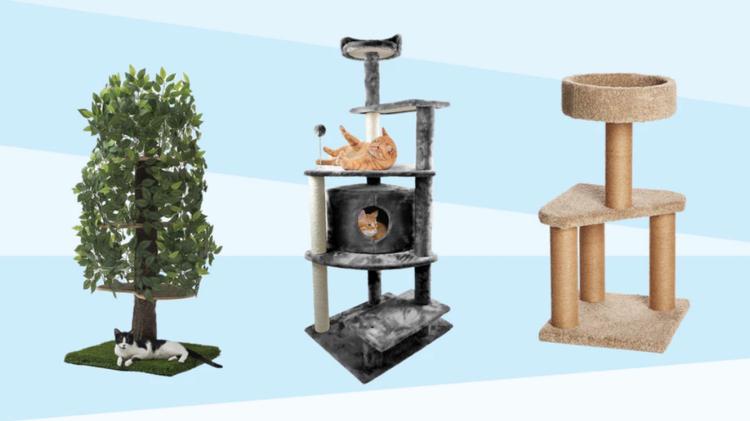 Les différents types d'arbre à chat sur la marché, comparatif complet